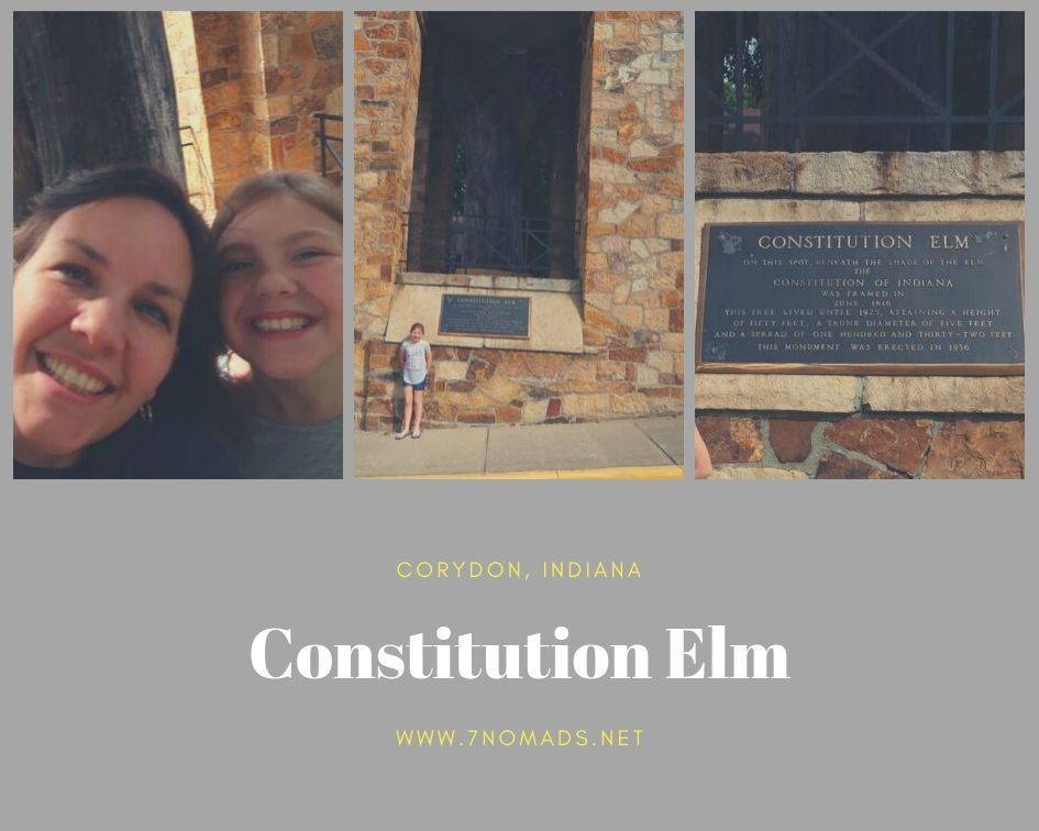 Constitution Elm Corydon, IN