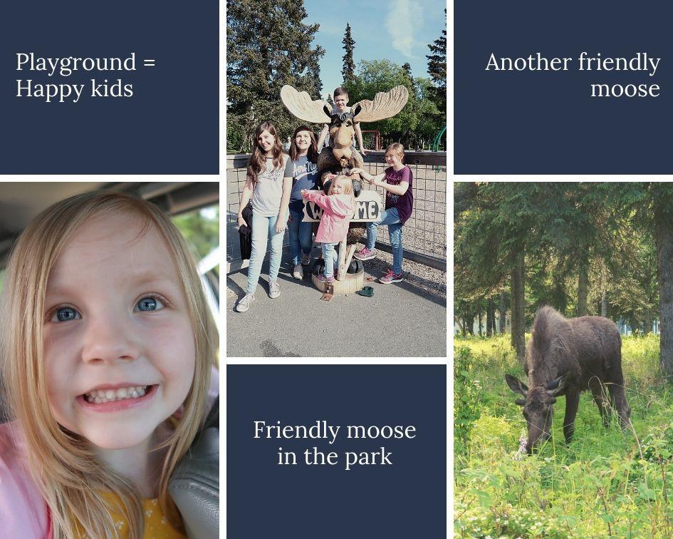 moose playground